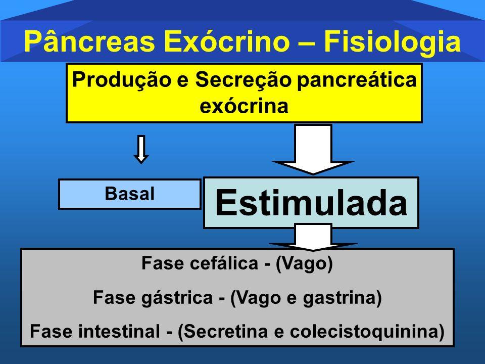 Pâncreas Exócrino – Fisiologia Produção e Secreção pancreática exócrina Basal Estimulada Fase cefálica - (Vago) Fase gástrica - (Vago e gastrina) Fase