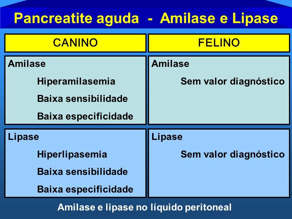 Pancreatite aguda - Amilase e Lipase CANINOFELINO Amilase Hiperamilasemia Baixa sensibilidade Baixa especificidade Amilase Sem valor diagnóstico Lipas