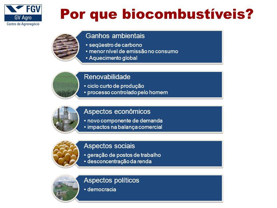 Por que biocombustíveis?