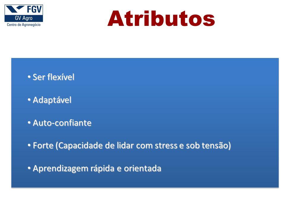 Ser flexível Ser flexível Adaptável Adaptável Auto-confiante Auto-confiante Forte (Capacidade de lidar com stress e sob tensão) Forte (Capacidade de lidar com stress e sob tensão) Aprendizagem rápida e orientada Aprendizagem rápida e orientada Atributos