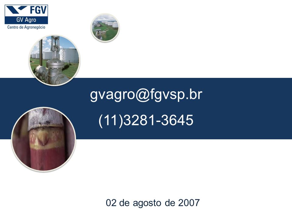 gvagro@fgvsp.br (11)3281-3645 02 de agosto de 2007