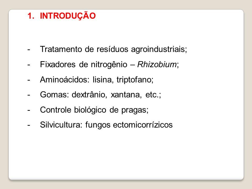 1.INTRODUÇÃO -Tratamento de resíduos agroindustriais; -Fixadores de nitrogênio – Rhizobium; -Aminoácidos: lisina, triptofano; -Gomas: dextrânio, xanta