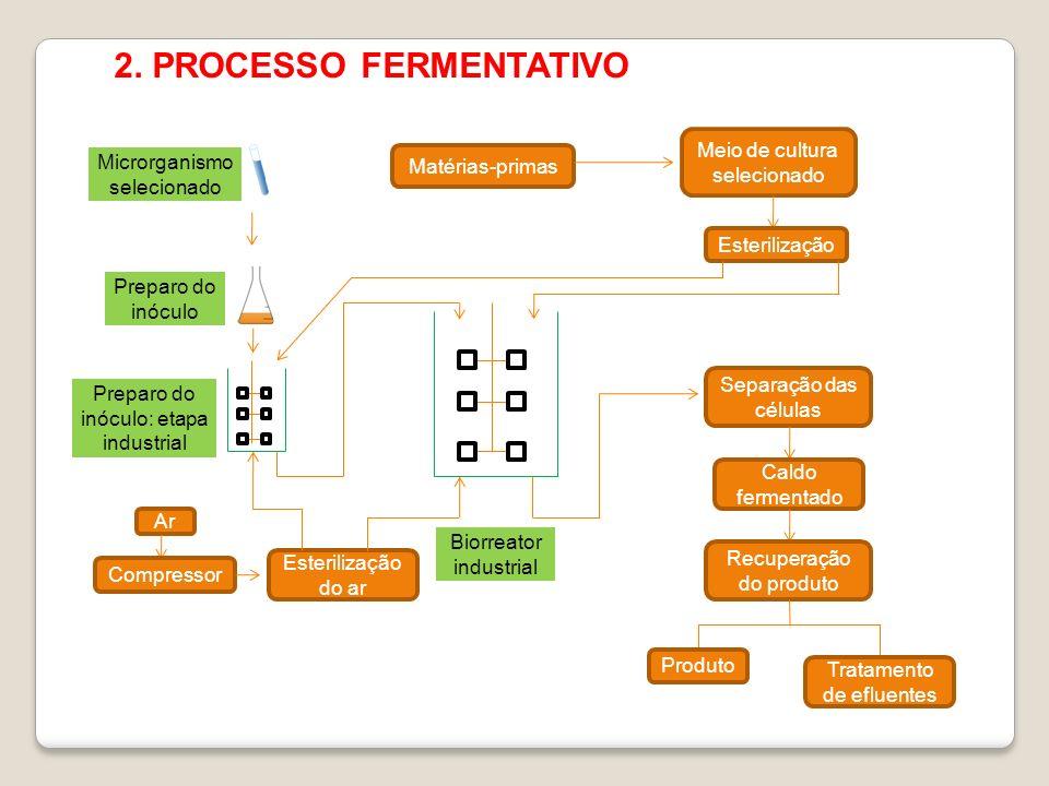 2. PROCESSO FERMENTATIVO Matérias-primas Meio de cultura selecionado Esterilização Ar Compressor Esterilização do ar Separação das células Caldo ferme