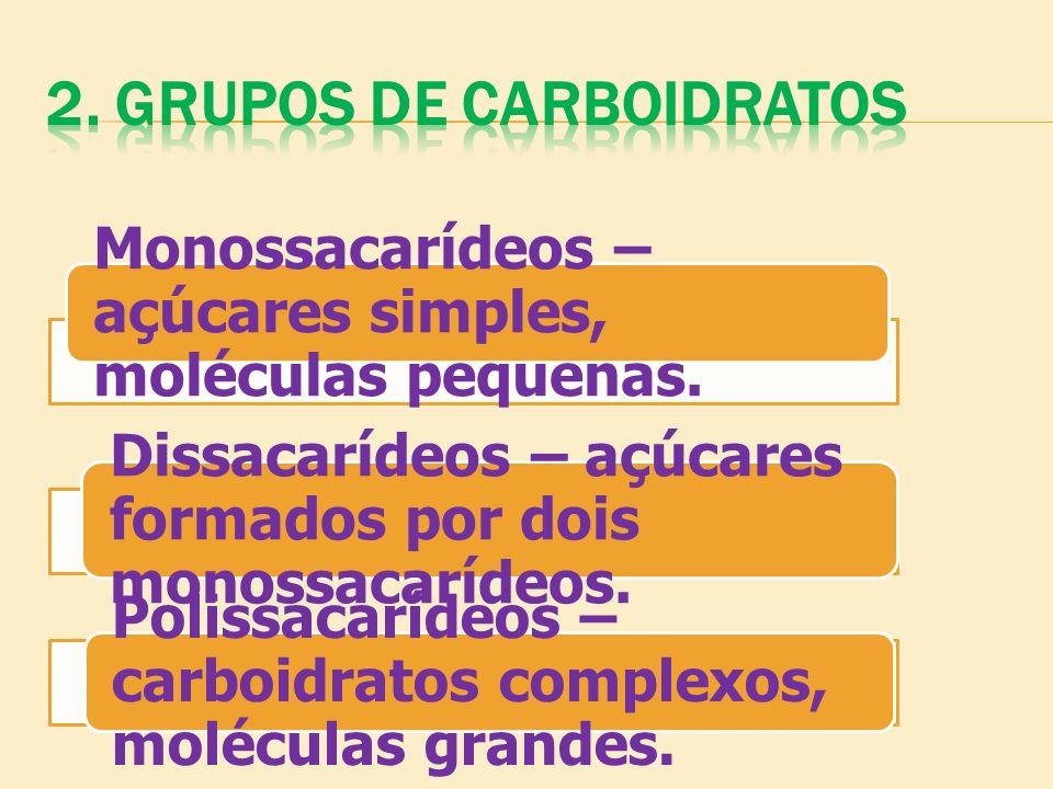 Monossacarídeos – açúcares simples, moléculas pequenas. Dissacarídeos – açúcares formados por dois monossacarídeos. Polissacarídeos – carboidratos com