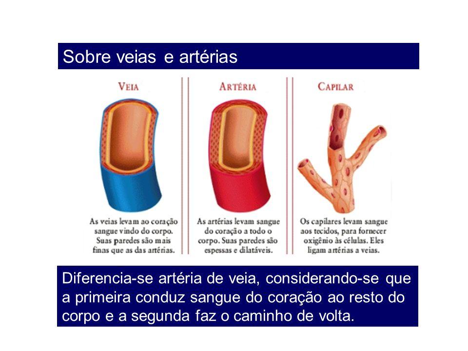 Sobre veias e artérias Diferencia-se artéria de veia, considerando-se que a primeira conduz sangue do coração ao resto do corpo e a segunda faz o cami