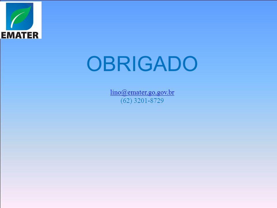 OBRIGADO lino@emater,go,gov.br (62) 3201-8729
