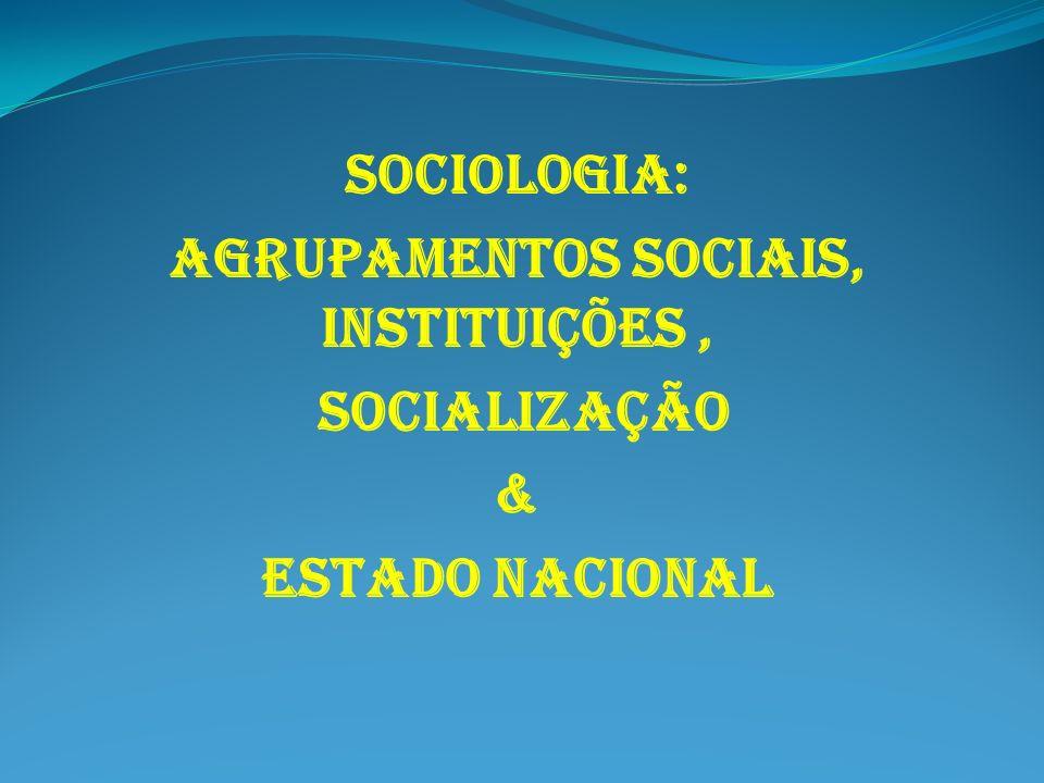 SOCIOLOGIA: AGRUPAMENTOS SOCIAIS, INSTITUIÇÕES, SOCIALIZAÇÃO & ESTADO NACIONAL