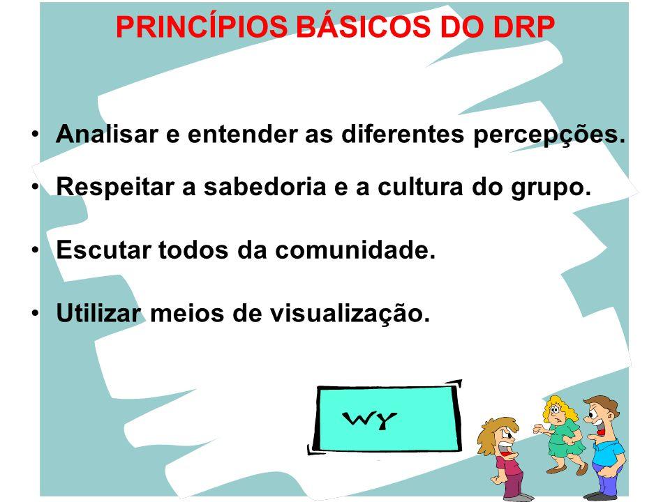 PRINCÍPIOS BÁSICOS DO DRP Respeitar a sabedoria e a cultura do grupo. Analisar e entender as diferentes percepções. Escutar todos da comunidade. Utili