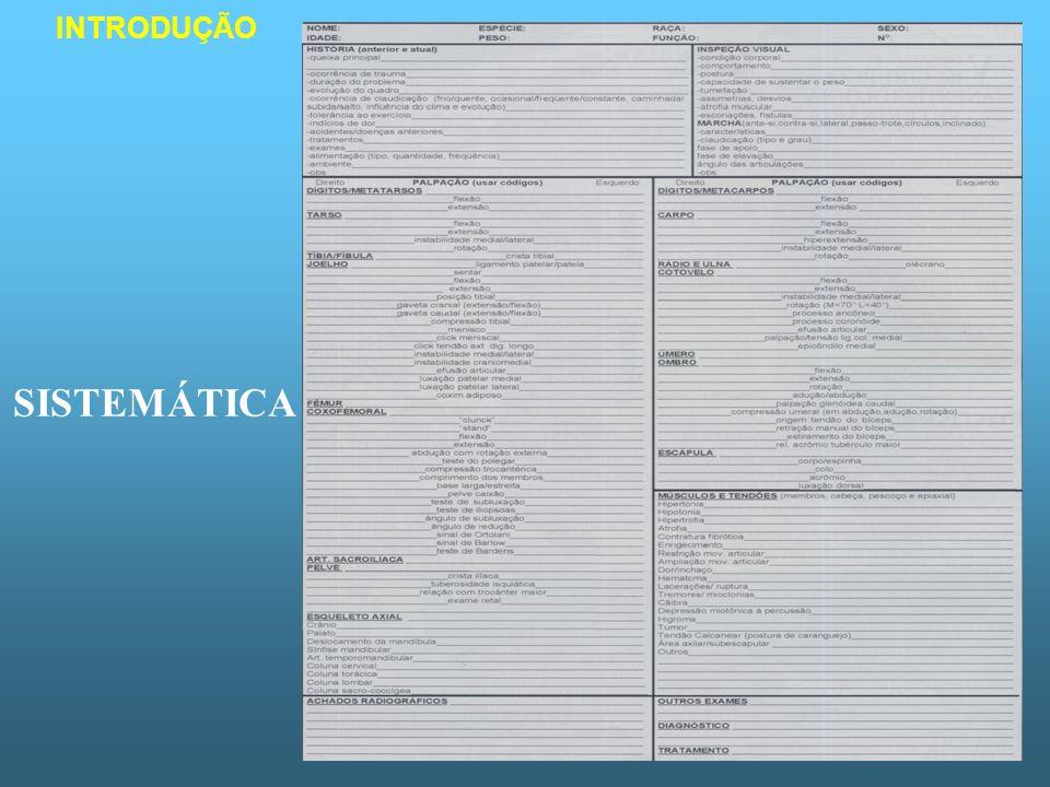 SISTEMÁTICA DO EXAME História clínica e queixa principal Exame geral Identificação do paciente Inspeção visual Avaliação da marcha Exame ortopédico – provocar os sinais