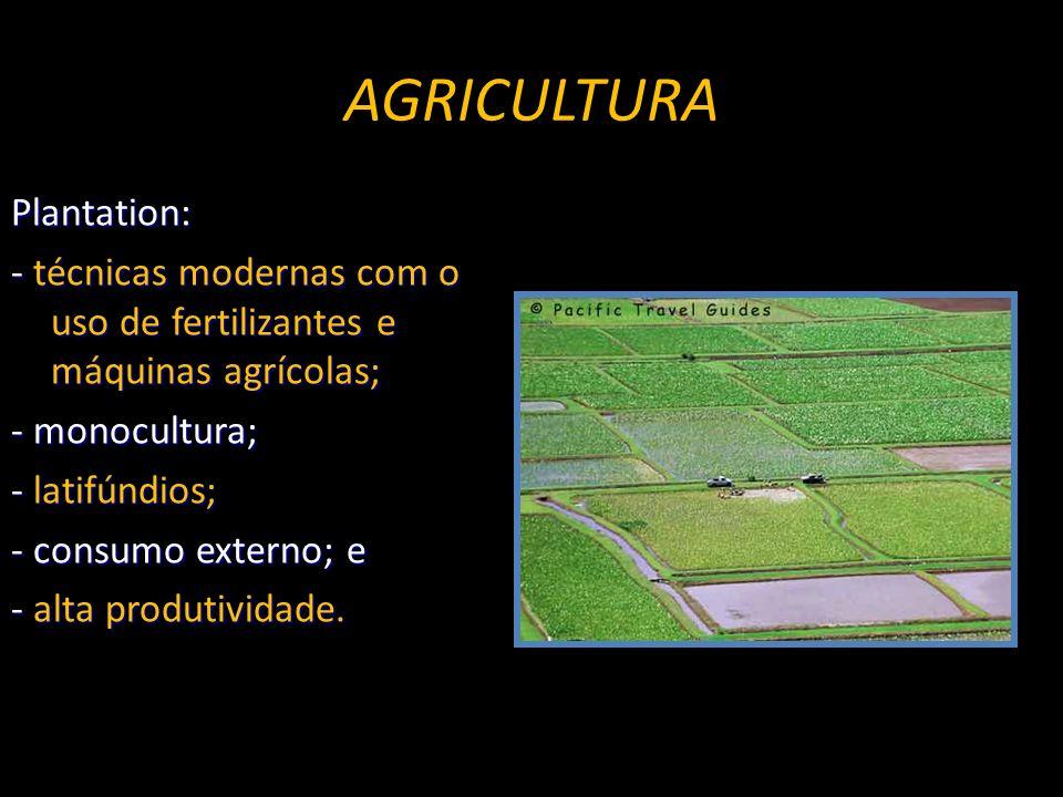 Plantation: - técnicas modernas com o uso de fertilizantes e máquinas agrícolas; - monocultura; - latifúndios; - consumo externo; e - alta produtividade.