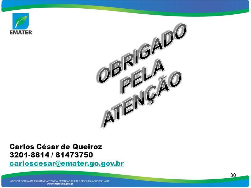 29 MÉTODOS DE ALCANCE MASSAL Campanha Semana Exposição