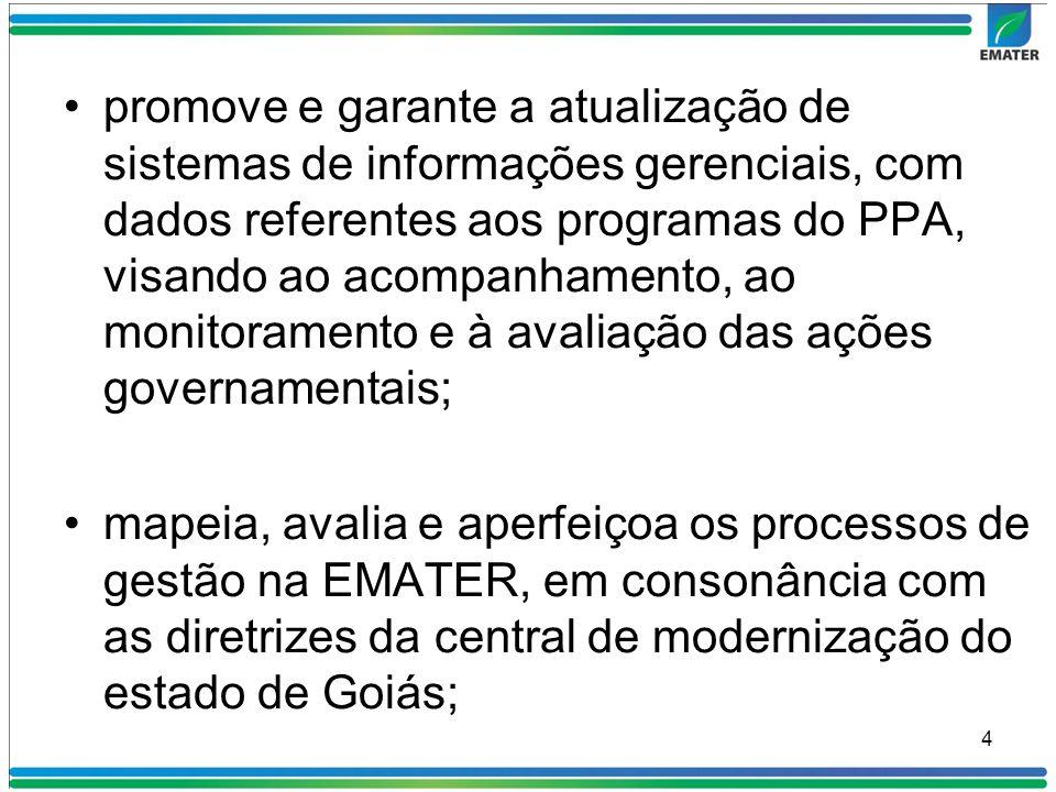 promove e garante a atualização de sistemas de informações gerenciais, com dados referentes aos programas do PPA, visando ao acompanhamento, ao monito