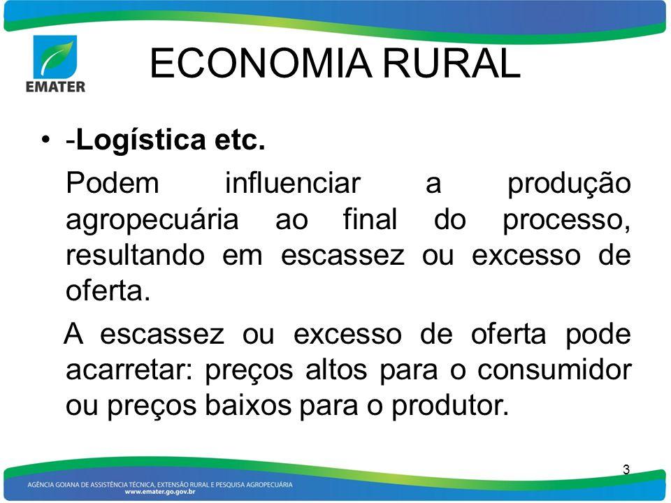 ECONOMIA RURAL Uma análise mercadológica com base no BALANÇO DE OFERTA E DEMANDA dos produtos aos níveis: municipal, estadual, nacional e internacional pode dar suporte aos produtores no processo decisório, quanto à: O que produzir.
