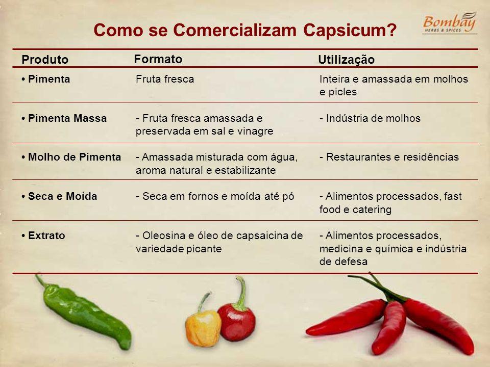 Como se Comercializam Capsicum? Pimenta Pimenta Massa Molho de Pimenta Seca e Moída Extrato Fruta fresca - Fruta fresca amassada e preservada em sal e