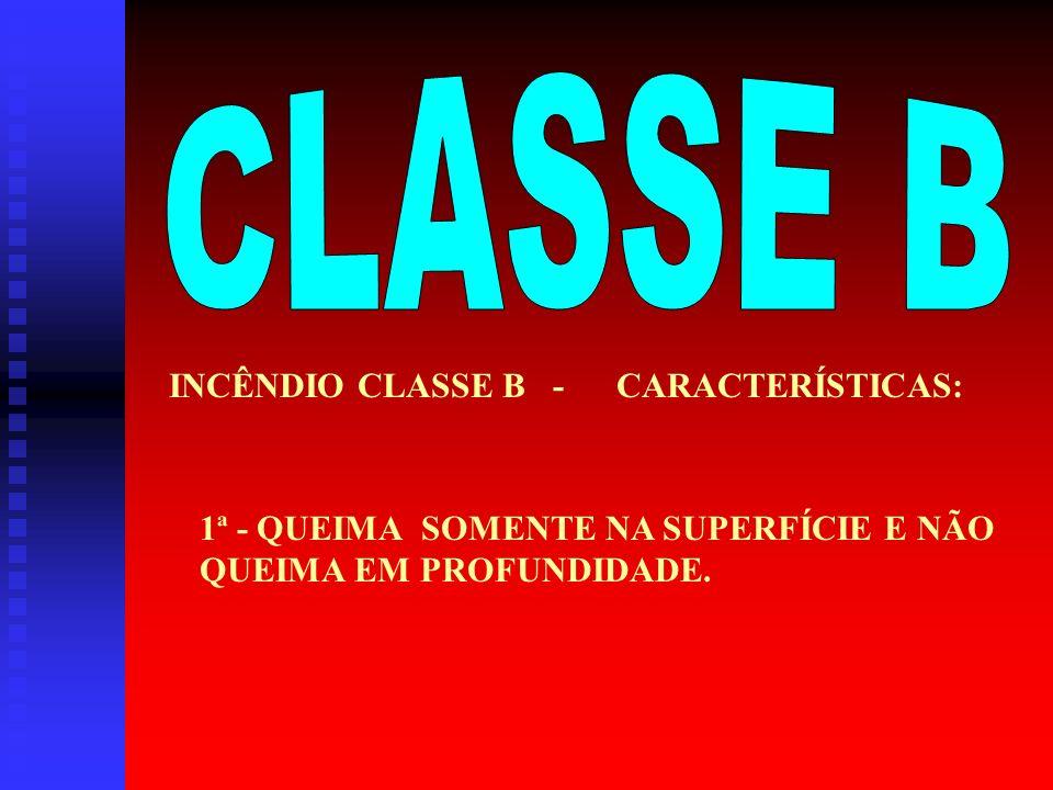 EXEMPLOS – CLASSE A PAPELBORRACHA TECIDOMADEIRA PLÁSTICOS OUTROS