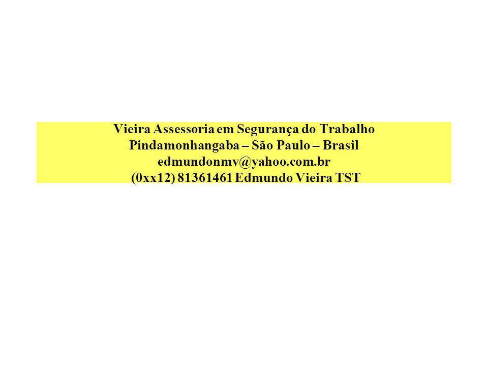 Vieira Assessoria em Segurança do Trabalho Pindamonhangaba – São Paulo – Brasil edmundonmv@yahoo.com.br (0xx12) 81361461 Edmundo Vieira TST
