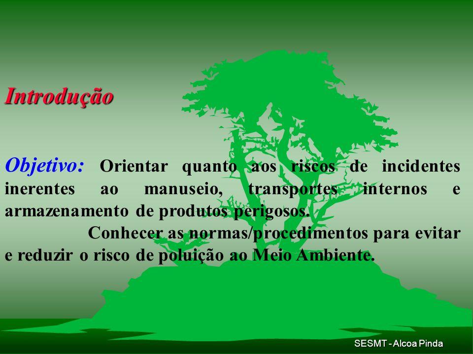 SESMT - Alcoa Pinda Organograma de Responsabilidades Processo de Auditoria de Segurança, Higiene Industrial e Saúde.