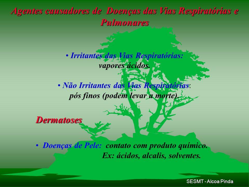 SESMT - Alcoa Pinda Agentes causadores de Doenças das Vias Respiratórias e Pulmonares Irritantes das Vias Respiratórias: vapores ácidos. Não Irritante