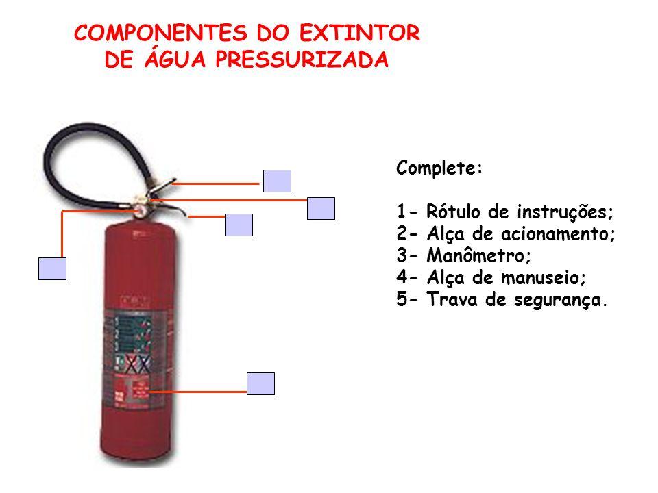 COMPONENTES DO EXTINTOR DE ÁGUA PRESSURIZADA Complete: 1- Rótulo de instruções; 2- Alça de acionamento; 3- Manômetro; 4- Alça de manuseio; 5- Trava de