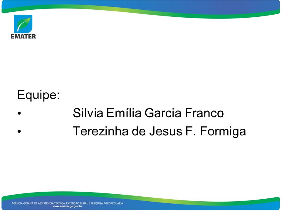 Equipe: Silvia Emília Garcia Franco Terezinha de Jesus F. Formiga