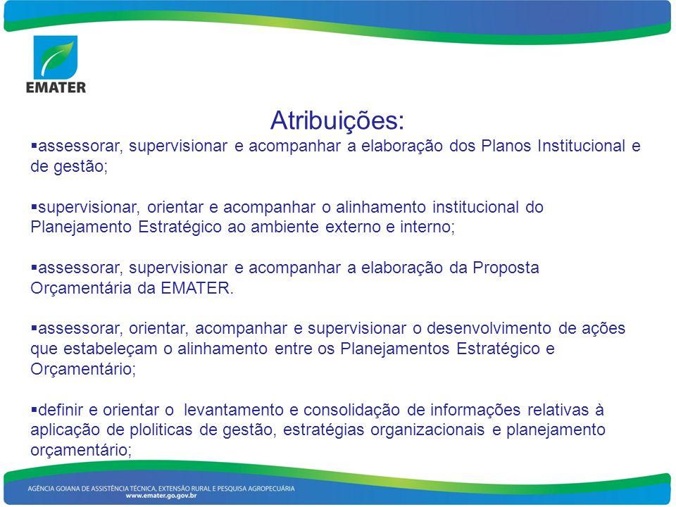 Atribuições: assessorar, supervisionar e acompanhar a elaboração dos Planos Institucional e de gestão; supervisionar, orientar e acompanhar o alinhamento institucional do Planejamento Estratégico ao ambiente externo e interno; assessorar, supervisionar e acompanhar a elaboração da Proposta Orçamentária da EMATER.