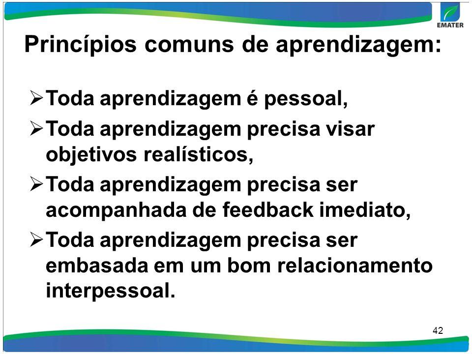 Princípios comuns de aprendizagem: Toda aprendizagem é pessoal, Toda aprendizagem precisa visar objetivos realísticos, Toda aprendizagem precisa ser a