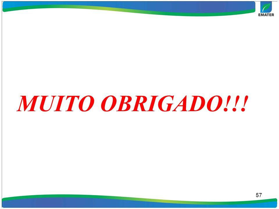 MUITO OBRIGADO!!! 57
