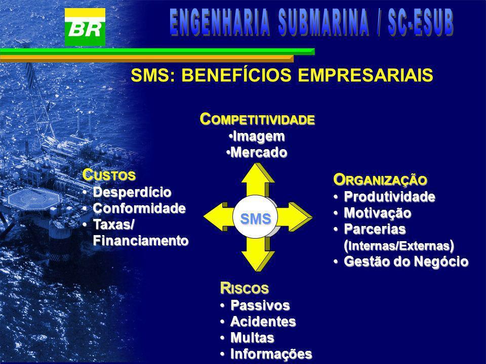 SMS: BENEFÍCIOS PESSOAIS ò Redução de acidentes; ò Prevenção de doenças ocupacionais; ò Melhor qualidade ambiental