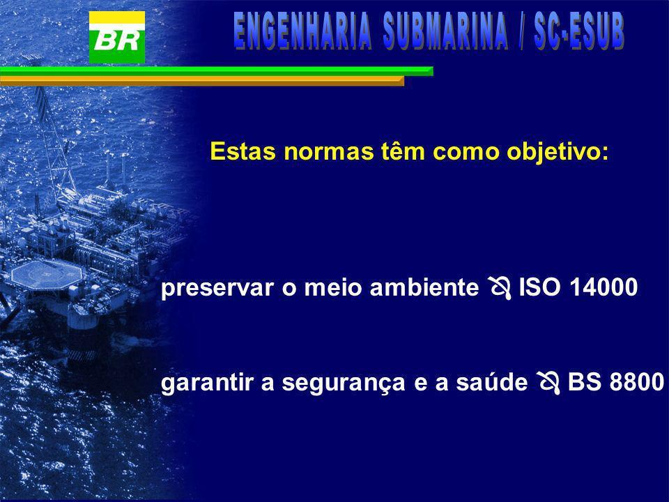 SMS MEIO AMBIENTE SEGURANÇA SAÚDE OBJETIVOS DO SISTEMA