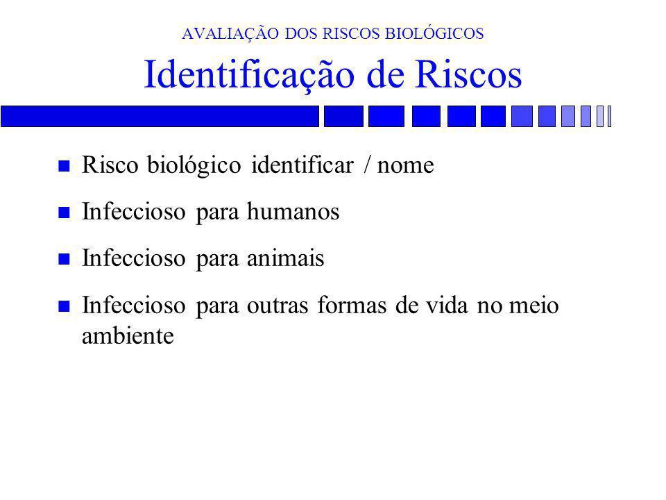AVALIAÇÃO DOS RISCOS BIOLÓGICOS Identificação de Riscos n Risco biológico identificar / nome n Infeccioso para humanos n Infeccioso para animais n Inf