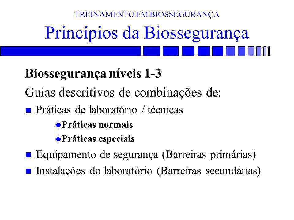 TREINAMENTO EM BIOSSEGURANÇA Princípios da Biossegurança Biossegurança níveis 1-3 Guias descritivos de combinações de: n Práticas de laboratório / téc