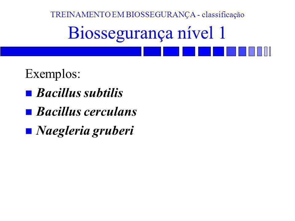 TREINAMENTO EM BIOSSEGURANÇA - classificação Biossegurança nível 1 Exemplos: n Bacillus subtilis n Bacillus cerculans n Naegleria gruberi
