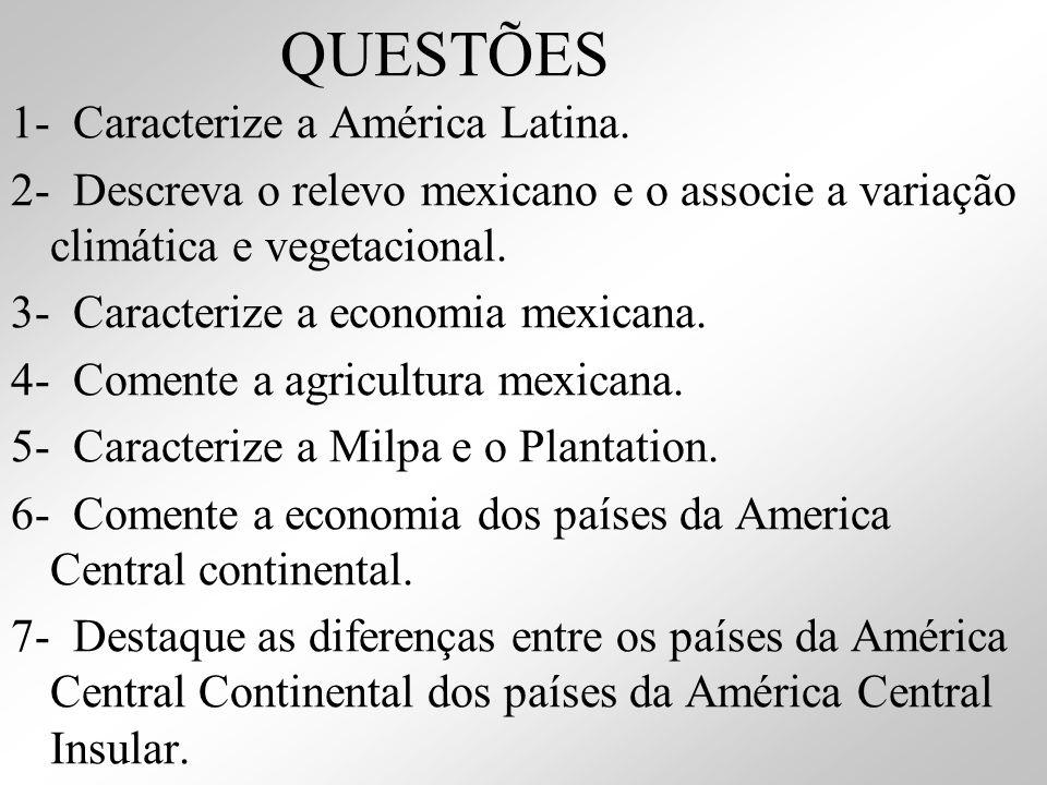 QUESTÕES 1- Caracterize a América Latina. 2- Descreva o relevo mexicano e o associe a variação climática e vegetacional. 3- Caracterize a economia mex