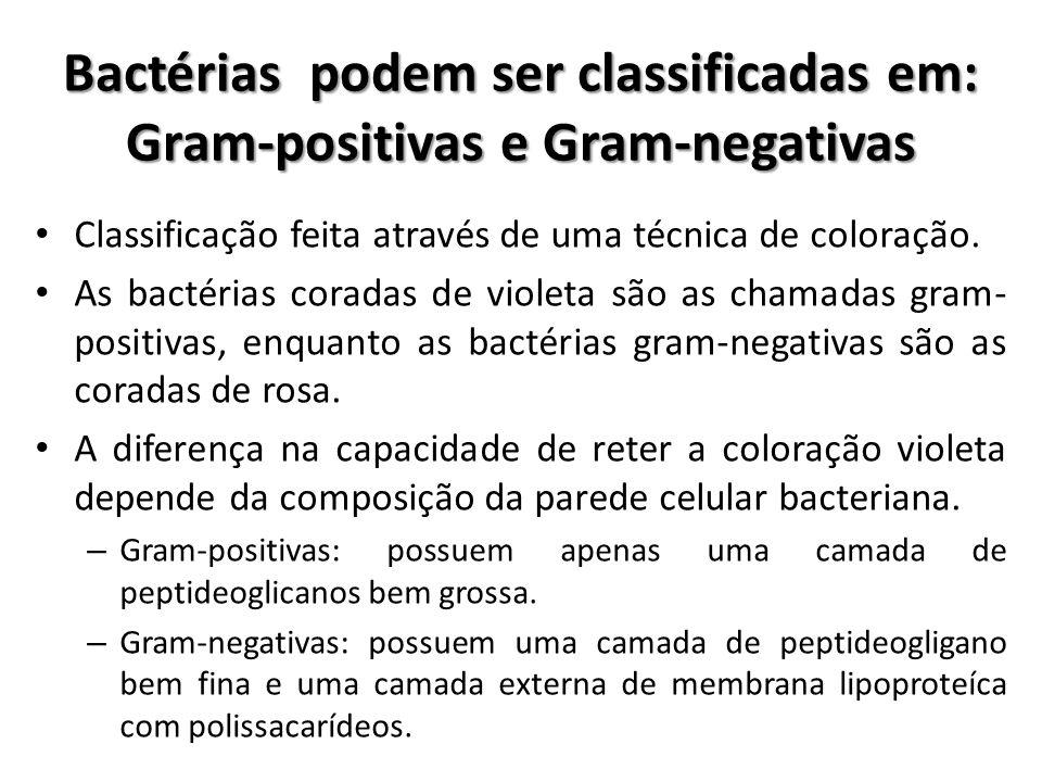 Classificação feita através de uma técnica de coloração. As bactérias coradas de violeta são as chamadas gram- positivas, enquanto as bactérias gram-n