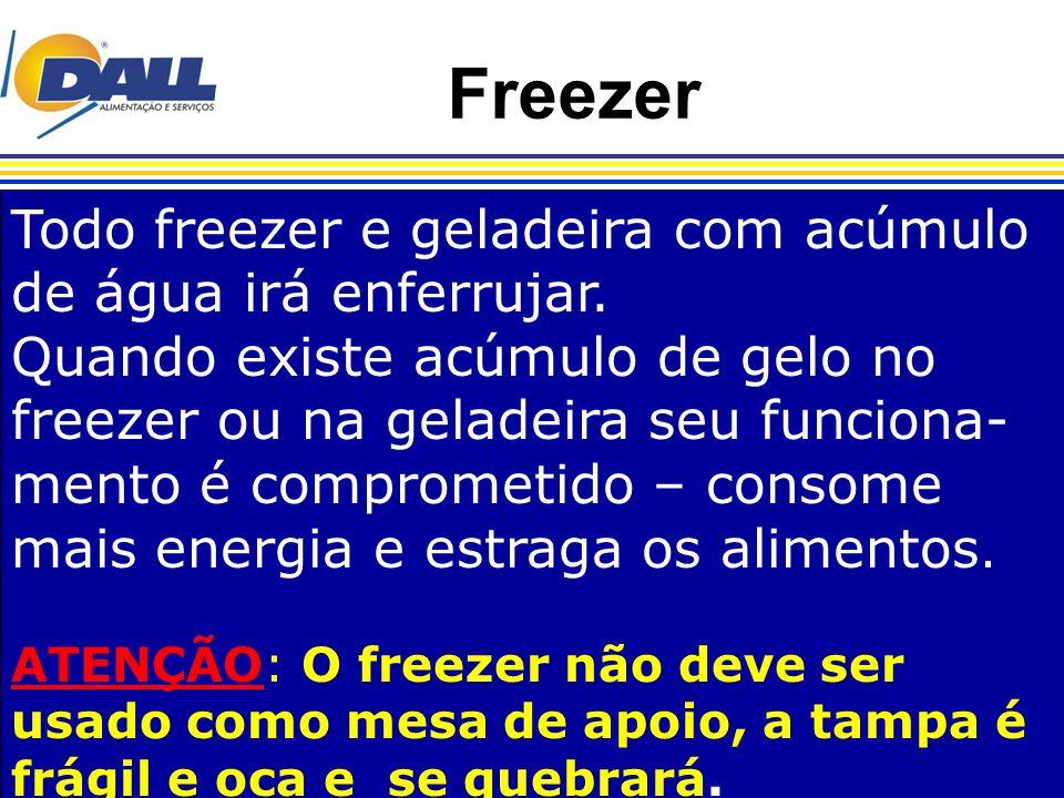 Freezer Todo freezer e geladeira com acúmulo de água irá enferrujar. Quando existe acúmulo de gelo no freezer ou na geladeira seu funciona- mento é co