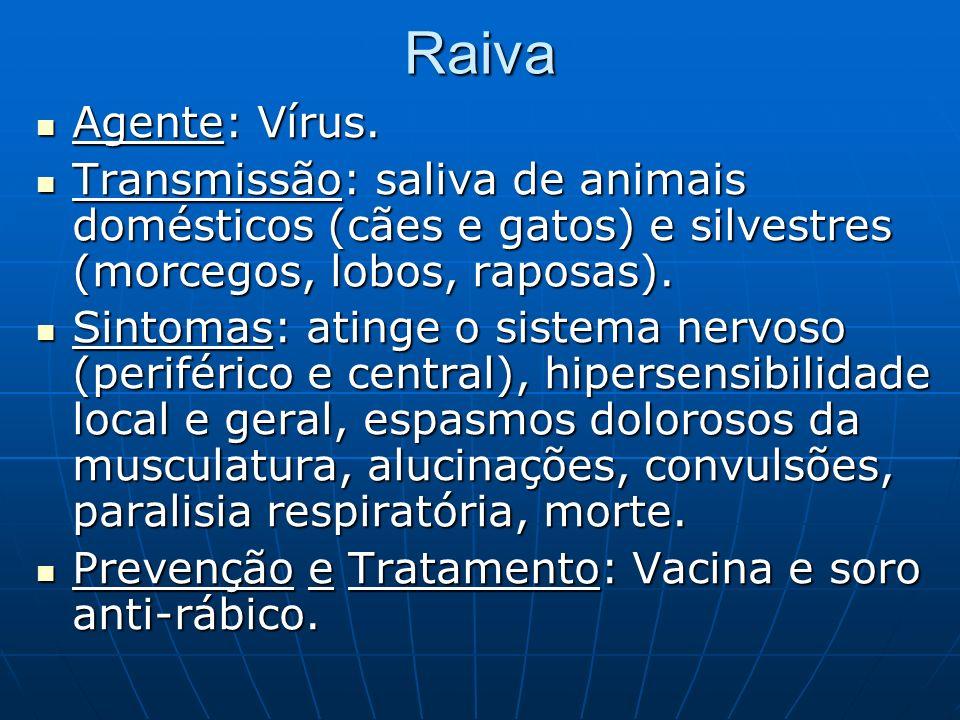 Raiva Agente: Vírus. Agente: Vírus. Transmissão: saliva de animais domésticos (cães e gatos) e silvestres (morcegos, lobos, raposas). Transmissão: sal