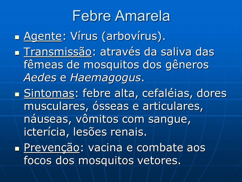 Febre Amarela Agente: Vírus (arbovírus). Agente: Vírus (arbovírus). Transmissão: através da saliva das fêmeas de mosquitos dos gêneros Aedes e Haemago