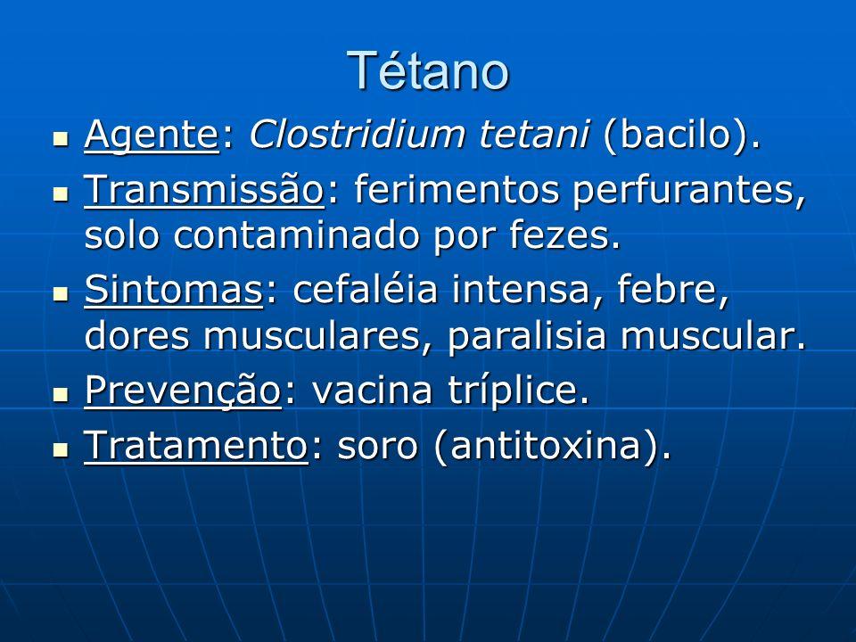 Tétano Agente: Clostridium tetani (bacilo). Agente: Clostridium tetani (bacilo). Transmissão: ferimentos perfurantes, solo contaminado por fezes. Tran