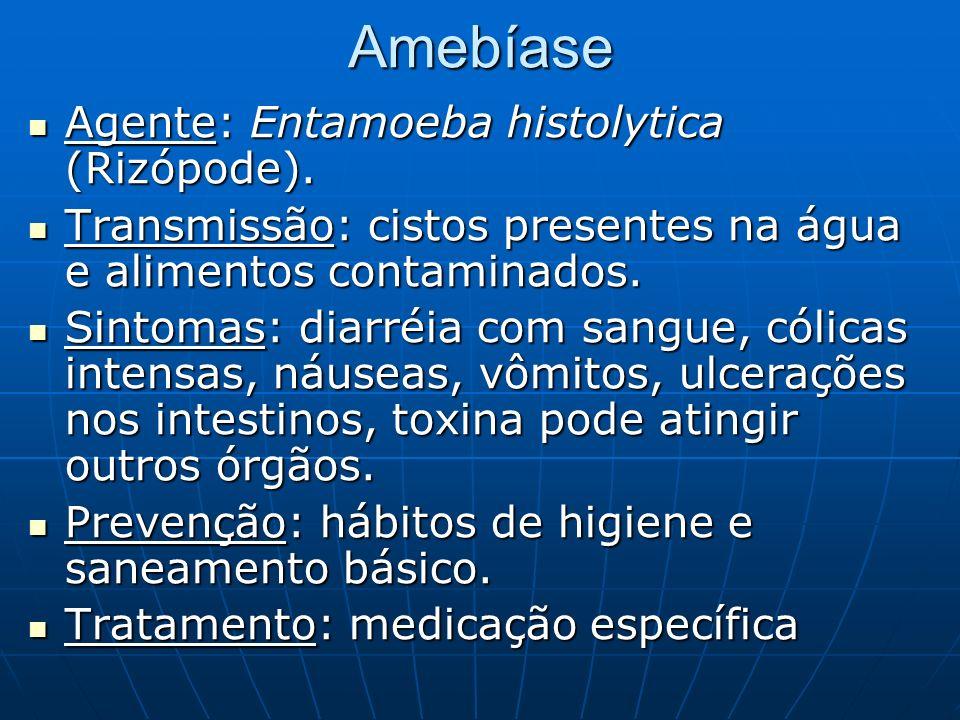Amebíase Agente: Entamoeba histolytica (Rizópode). Agente: Entamoeba histolytica (Rizópode). Transmissão: cistos presentes na água e alimentos contami