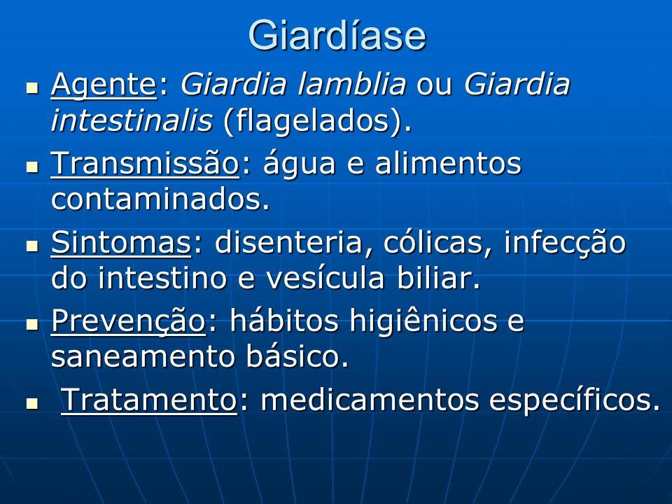 Giardíase Agente: Giardia lamblia ou Giardia intestinalis (flagelados). Agente: Giardia lamblia ou Giardia intestinalis (flagelados). Transmissão: águ