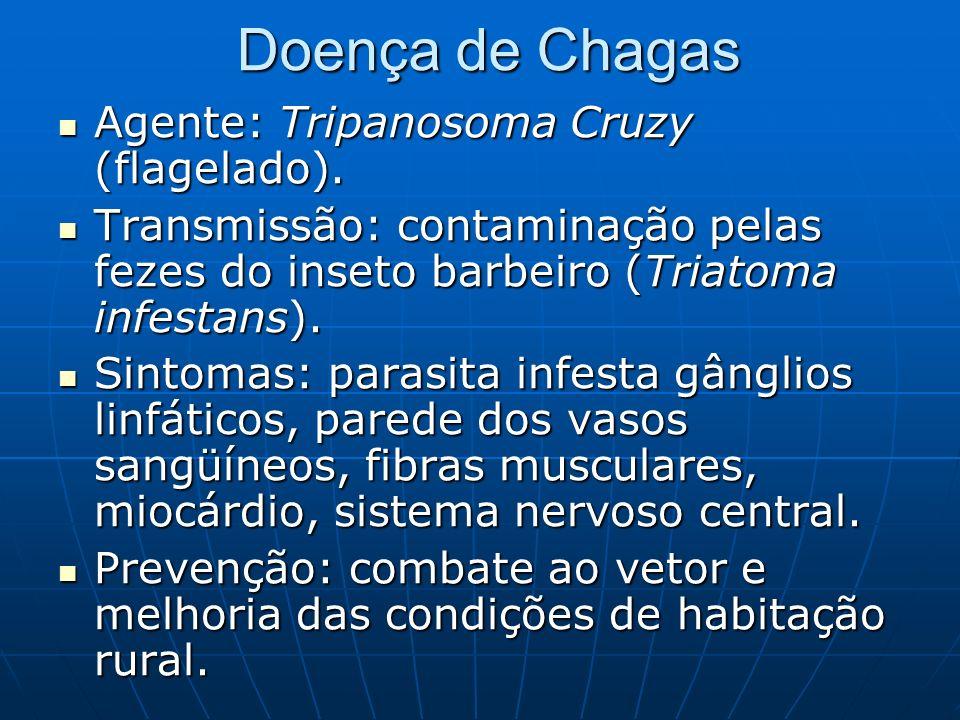 Doença de Chagas Agente: Tripanosoma Cruzy (flagelado). Agente: Tripanosoma Cruzy (flagelado). Transmissão: contaminação pelas fezes do inseto barbeir