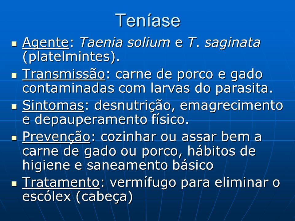Teníase Agente: Taenia solium e T. saginata (platelmintes). Agente: Taenia solium e T. saginata (platelmintes). Transmissão: carne de porco e gado con