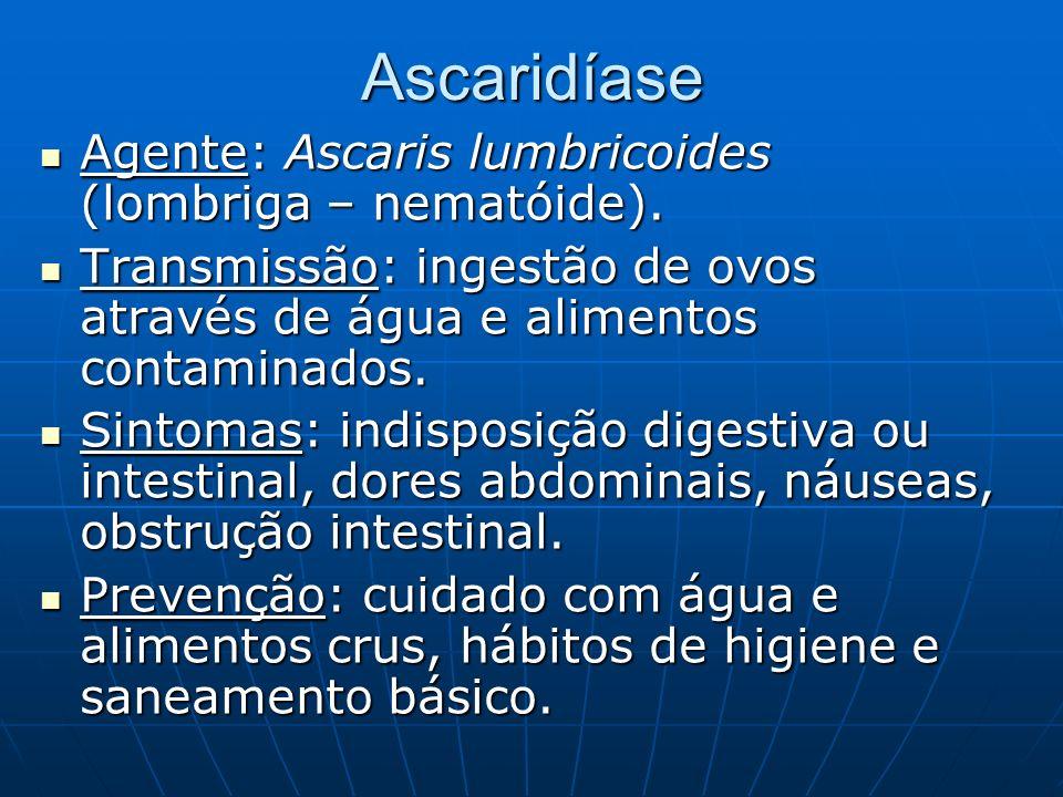 Ascaridíase Agente: Ascaris lumbricoides (lombriga – nematóide). Agente: Ascaris lumbricoides (lombriga – nematóide). Transmissão: ingestão de ovos at