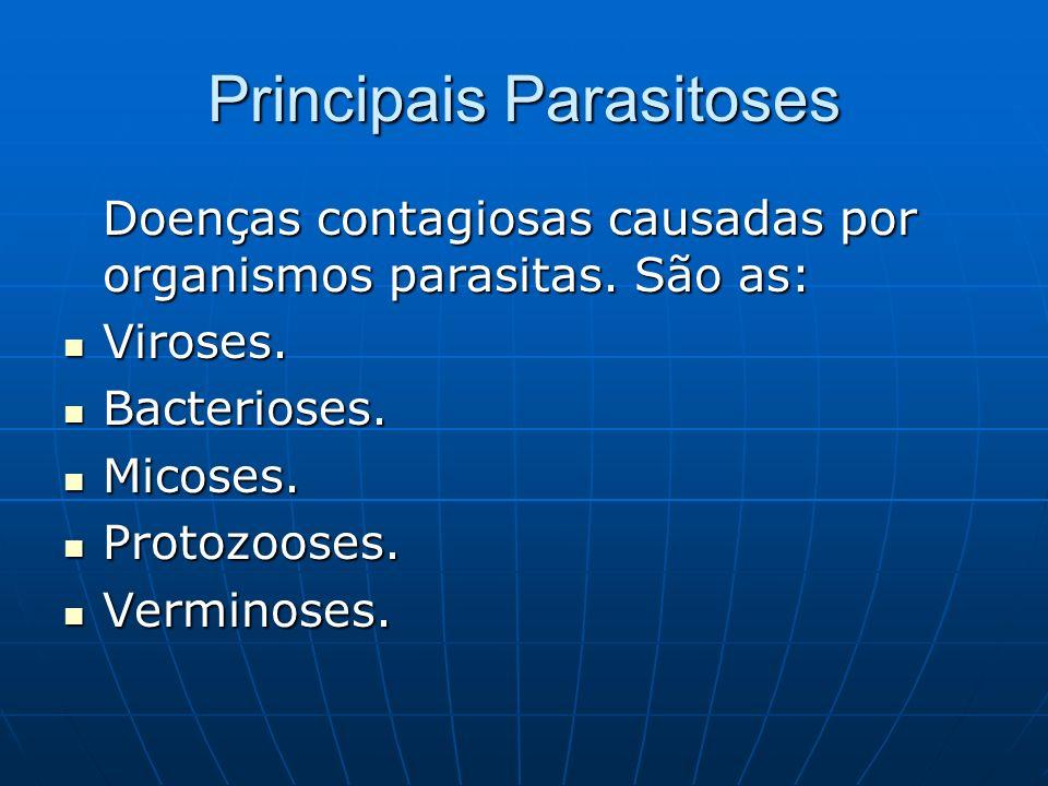 Principais Parasitoses Doenças contagiosas causadas por organismos parasitas. São as: Viroses. Viroses. Bacterioses. Bacterioses. Micoses. Micoses. Pr