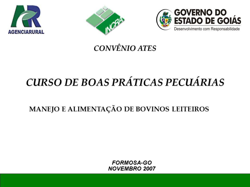 MANEJO E ALIMENTAÇÃO DE BOVINOS LEITEIROS FORMOSA-GO NOVEMBRO 2007 CURSO DE BOAS PRÁTICAS PECUÁRIAS CONVÊNIO ATES