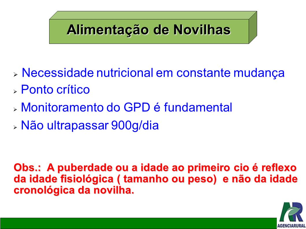 Alimentação de Novilhas Necessidade nutricional em constante mudança Ponto crítico Monitoramento do GPD é fundamental Não ultrapassar 900g/dia Obs.: A
