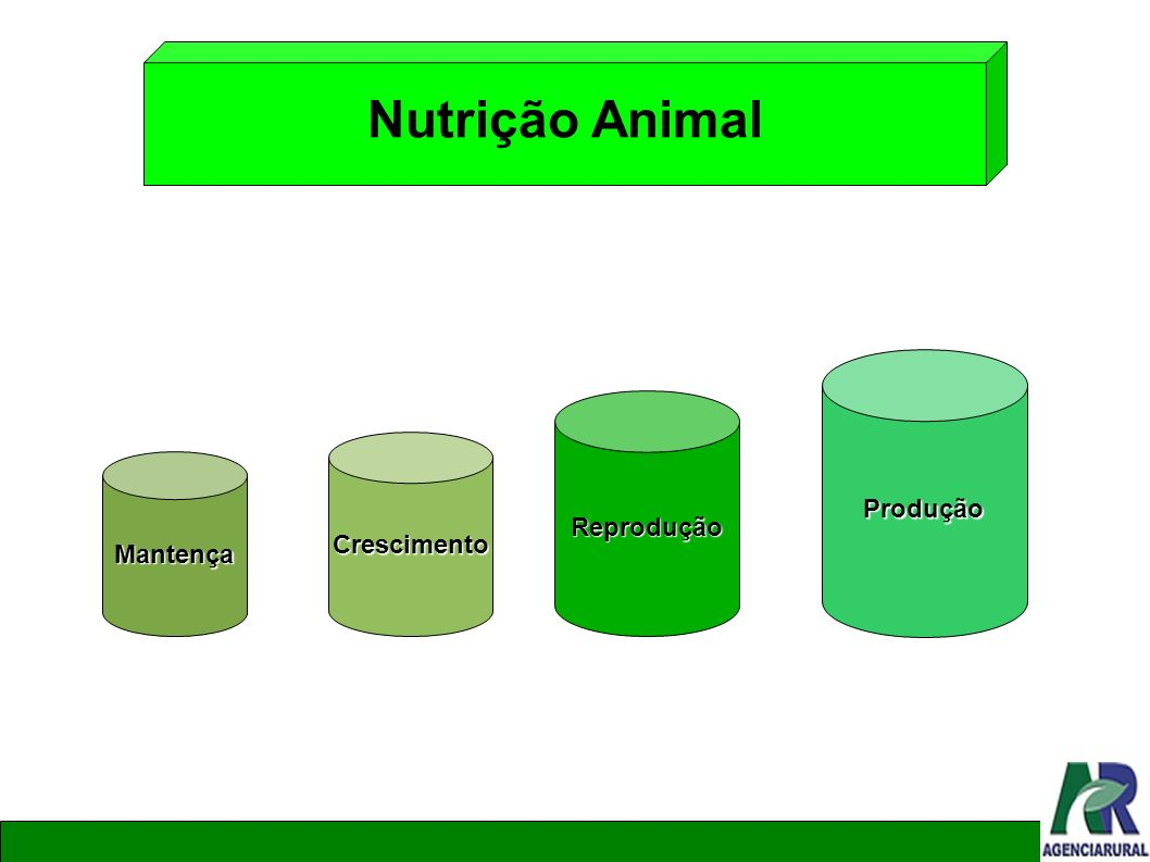 Nutrição Animal Mantença Crescimento Reprodução Produção