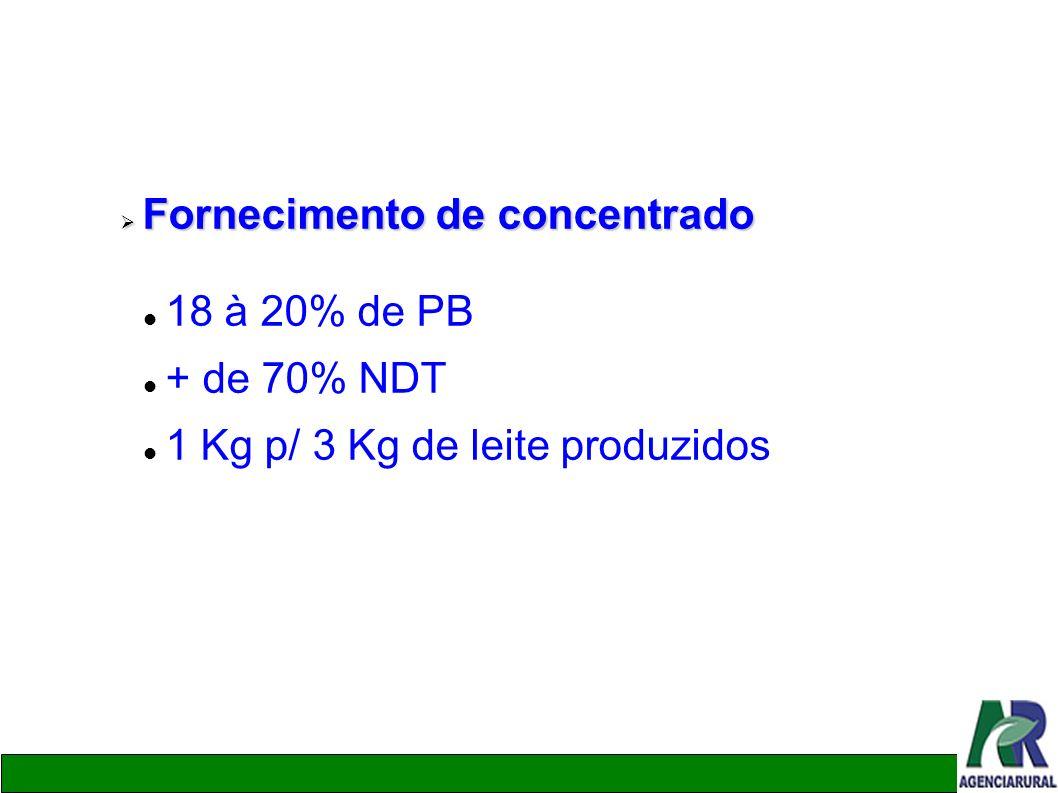 Fornecimento de concentrado Fornecimento de concentrado 18 à 20% de PB + de 70% NDT 1 Kg p/ 3 Kg de leite produzidos