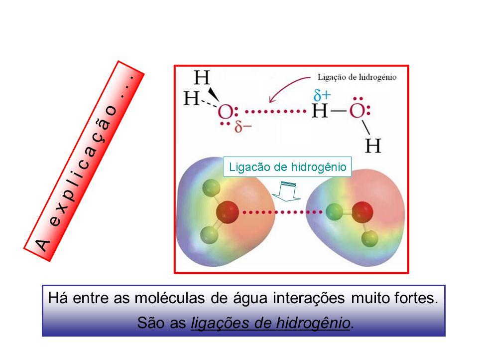 A e x p l i c a ç ã o... Há entre as moléculas de água interações muito fortes. São as ligações de hidrogênio.