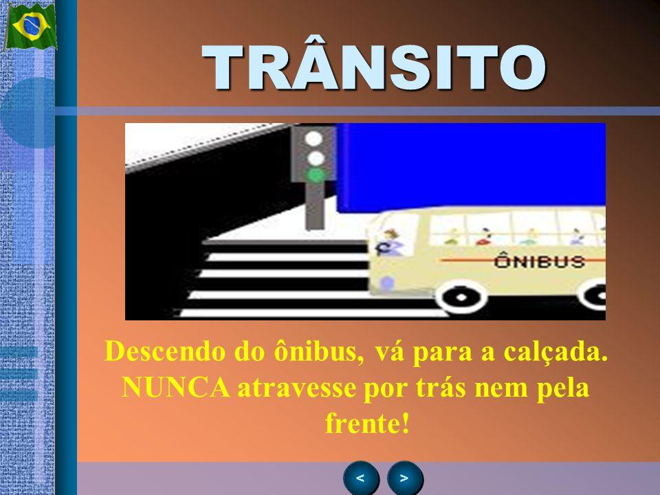 > > < <TRÂNSITO SÓ ATRAVESSE NA FAIXA DE SEGURANÇA!!!